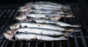 3 fisk der egner sig godt til grillen