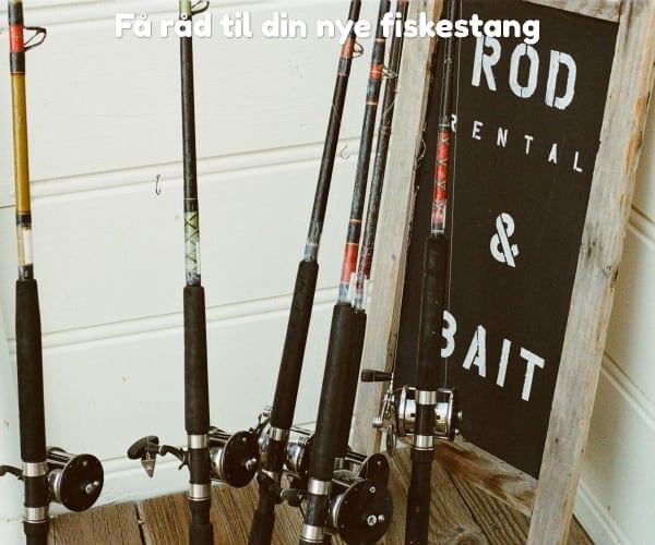 Få råd til din nye fiskestang